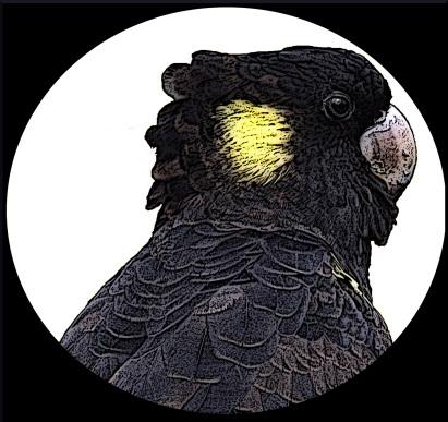 logo image(1)